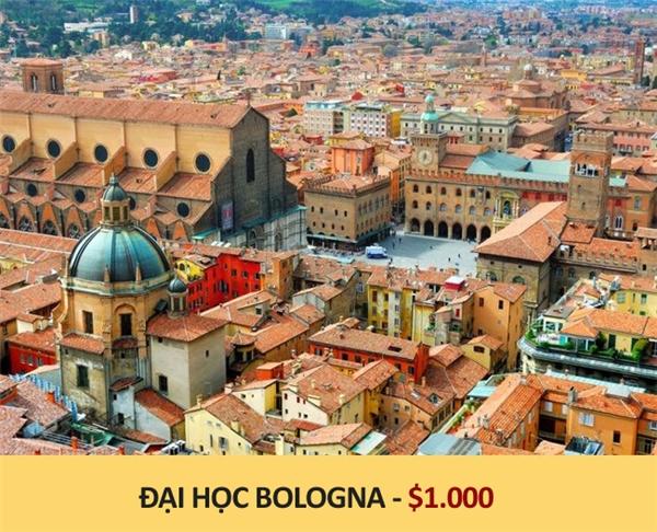 dai-hoc-bologna